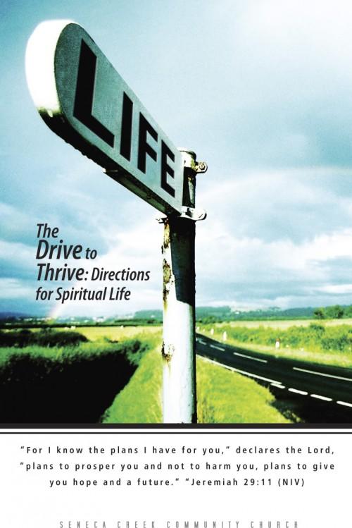 program_drive